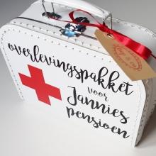overlevingspakket pensioen opa en oma overlevingspakket kinderkoffertje kinderkoffertjes koffertjes naamkoffertjes zwangerschapsaankondiging zwangerschap aankondigen